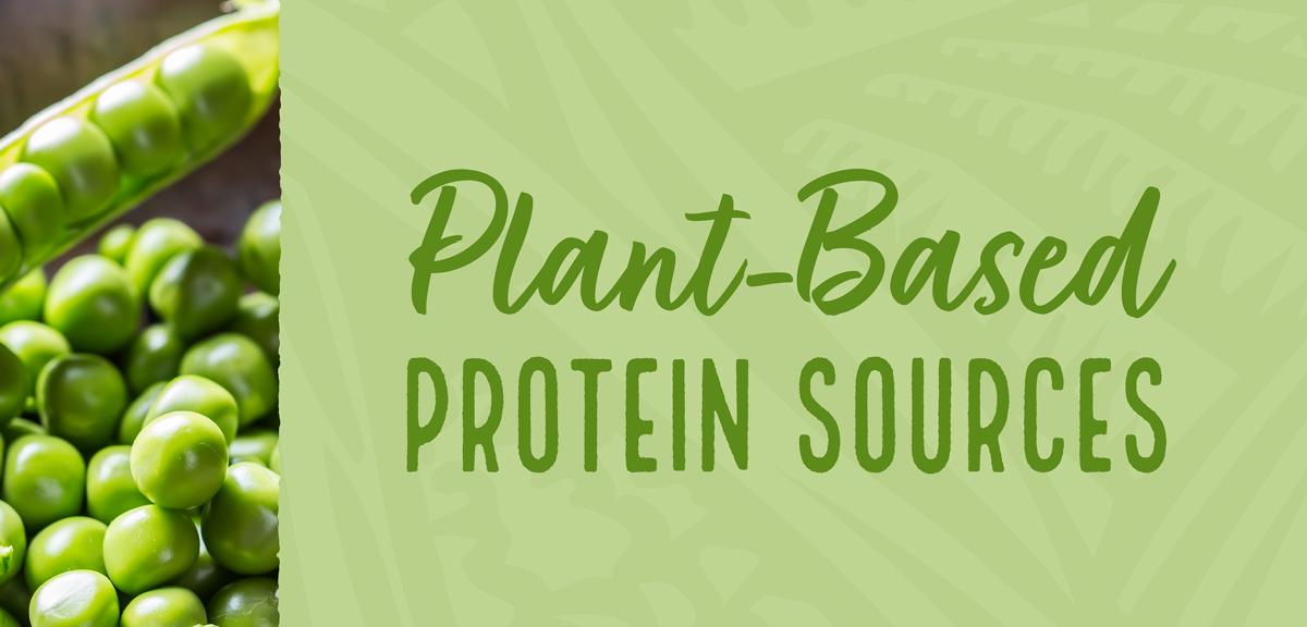Protein Alternatives